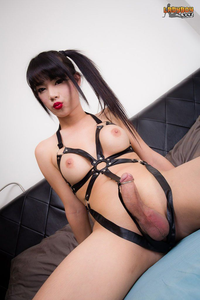 asian girls sex mit transen