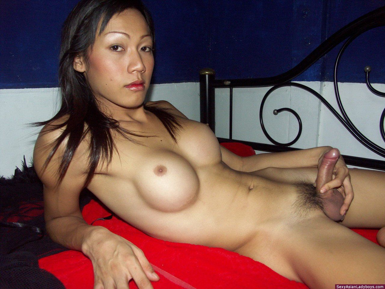 Asian Lady Boy Copilation Porn asian ladyboy nancee - adult best compilations website.